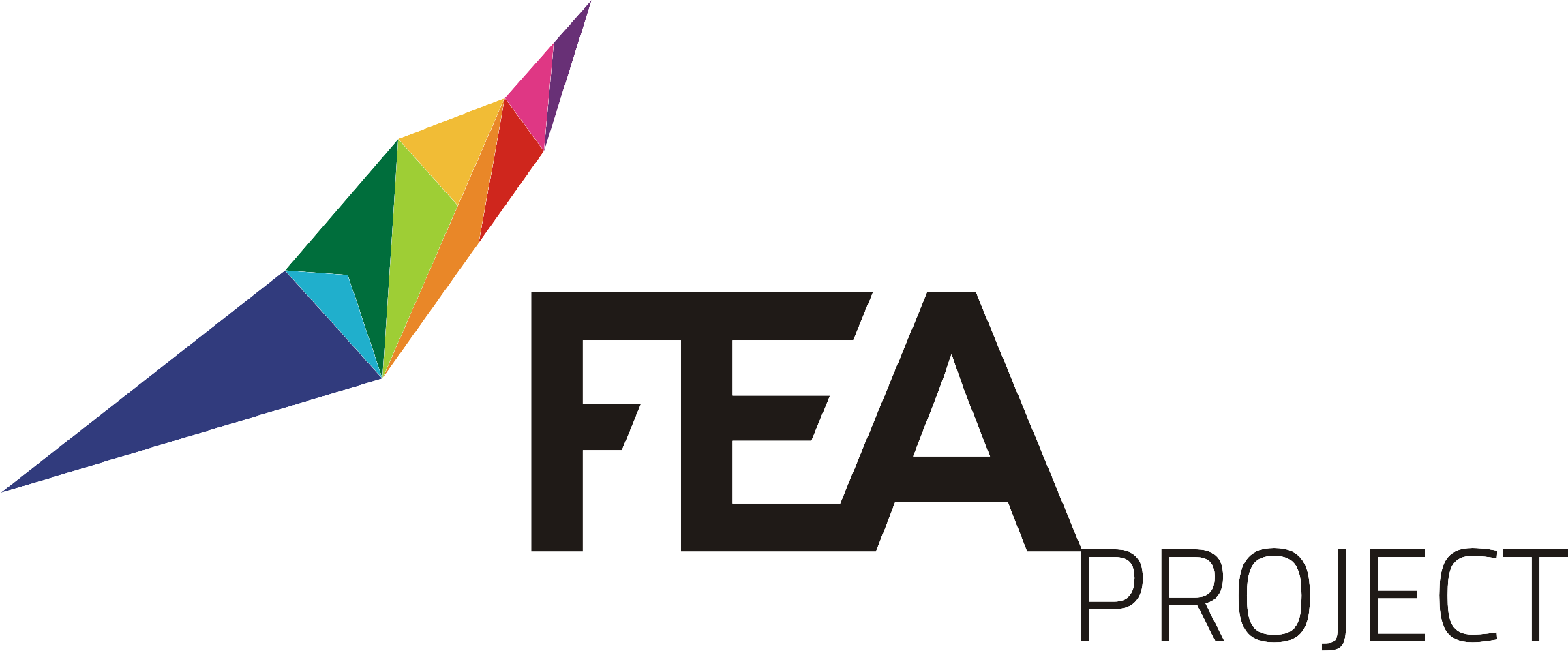 logo-FEA Project